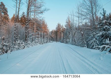 Snow covered woods in winter ural forest - empty road at sunset, horizontal, wide angle
