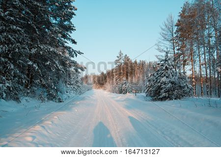 Winter road at sunset in snow covered forest, ural, horizontal, wide angle