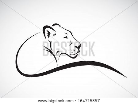 Vector of a lion female design on white background Wild Animals.