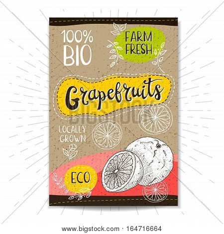 Colorful label in sketch style, food, spices, cardboard textured background. Grapefruits Fruits. Bio, eco, farm, fresh. locally grown. Hand drawn vector illustration