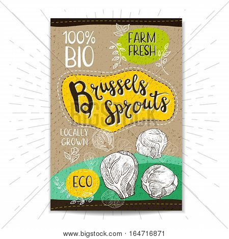 Colorful label in sketch style, food, spices, cardboard textured background. Brussels sprouts. Vegetables Bio, eco, farm, fresh. locally grown. Hand drawn vector illustration