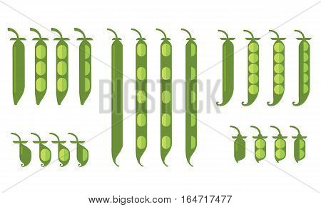 Beans beans chickpeas lentils and peas in pods on a white background