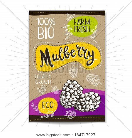 Colorful label in sketch style, food, spices, cardboard textured background. Mulberry Fruits. Bio, eco, farm, fresh. locally grown. Hand drawn vector illustration