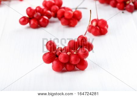 Schisandra chinensis or five-flavor berry. Fresh red ripe berry on white.