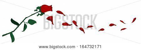 Flying rose petals on transparent background for valentine greeting