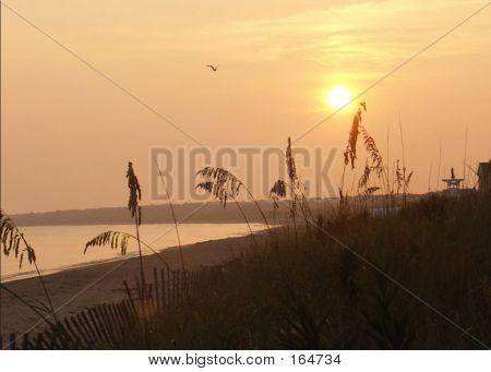 Sunrise At Peace
