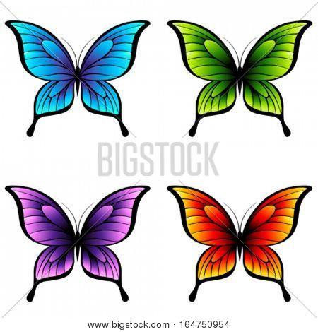 Butterflies. Beautiful abstract vector illustration.