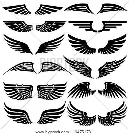 Wings. Elements for design. Vector illustration.
