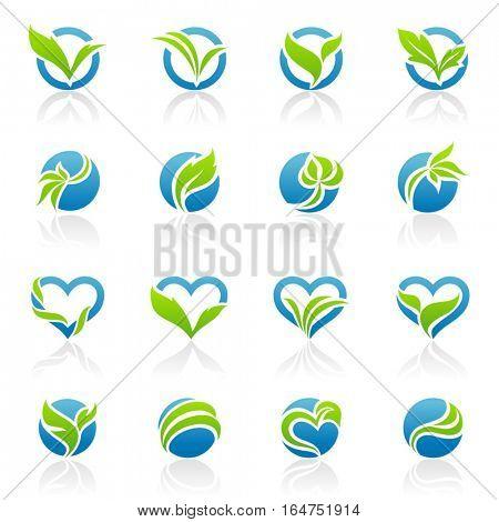 Leaves. Elements for design. Vector illustration.