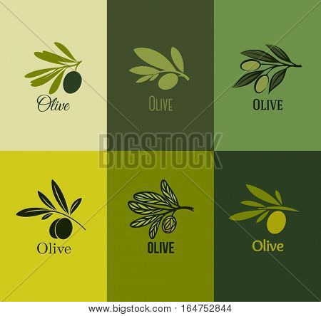 Olive branch. Set of labels. Vector illustration