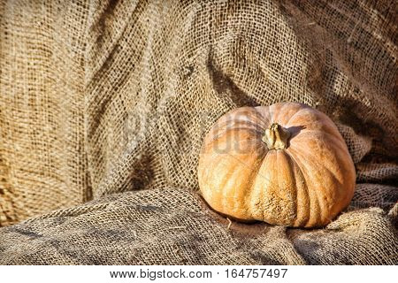 Yellow Pumpkin on burlap sack background.Retro style toned image.