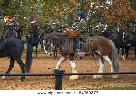 London UK - 31 October 2016: The Band of The Household Cavalry on a training session in Hyde Park, London