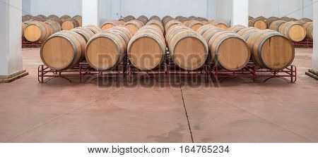 American oak barrels aging wine in modern winery