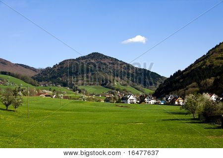 Landscape in the Black - forest , Germany , Glottertal