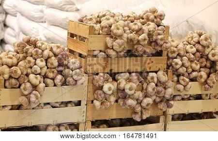Crates Of Red And White Garlic For Sale