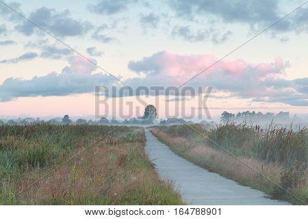 biking road in Dutch countryside at sunrise Netherlands
