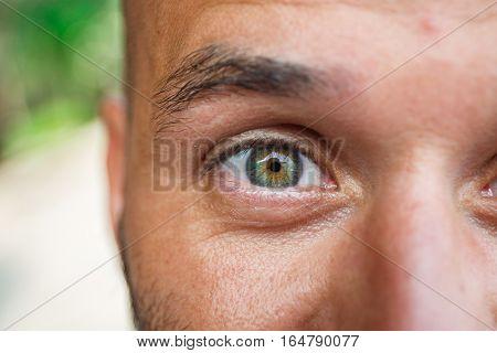 Macro view of a male green eye