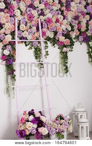 floral interior - vases with roses near the stairs on the background wall flower