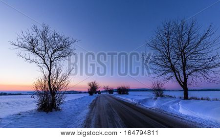 Blue hour silhouettes of trees and a road in winter. Moravian landscape Sudice.