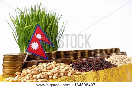 Nepal Flag Waving With Stack Of Money Coins And Piles Of Wheat And Rice Seeds