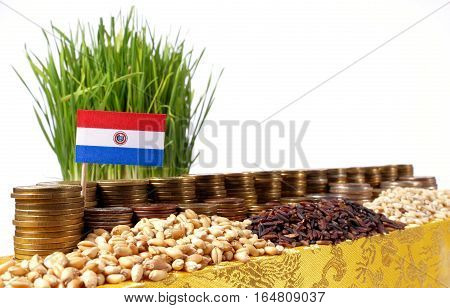Paraguay Flag Waving With Stack Of Money Coins And Piles Of Wheat And Rice Seeds