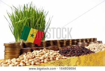 Senegal Flag Waving With Stack Of Money Coins And Piles Of Wheat And Rice Seeds