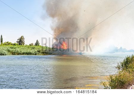 A wildfire burning in the reeds next to the Riet River (reed river) at Ritchie a small town in the Northern Cape Province
