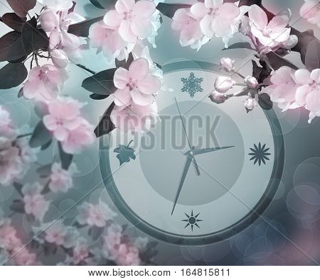 Delicate flowers of apple and watches. Concept. Spring time. Nature awakens after winter sleep. Blooming spring background. The cool spring morning. Twilight.