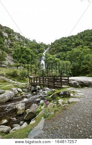 Aber Falls Bridge with river bellow and waterfall in the background,  Summer with  trees and plants surrounding portrait. Abergwyngregyn North Wales UK