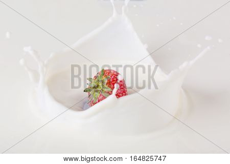 Red strawberry falling in milk on white plate with splashes.