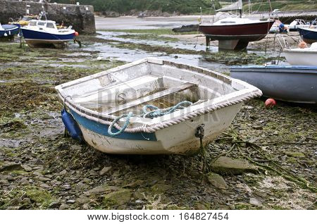old White rowing boat beached on the shore in harbour surrounded by seaweed, sand and other boats