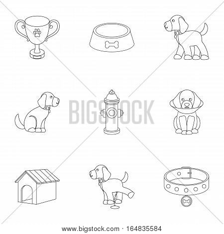 Dog equipment set icons in outline style. Big collection dog equipment vector symbol stock