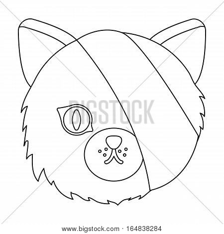 Sick cat with bandage on a head icon in outline design isolated on white background. Veterinary clinic symbol stock vector illustration.