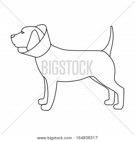 Dog with elizabethan collar icon in outline design isolated on white background. Veterinary clinic symbol stock vector illustration.