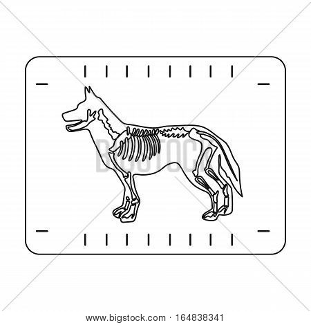 Dog x-ray icon in outline design isolated on white background. Veterinary clinic symbol stock vector illustration.