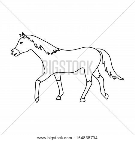 Horse icon in outline design isolated on white background. Hippodrome and horse symbol stock vector illustration.