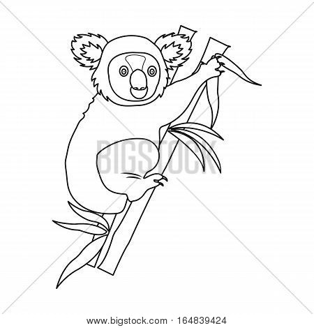 Australian koala icon in outline design isolated on white background. Australia symbol stock vector illustration.