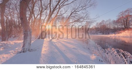 Sunny winter landscape. Sunny winter background with sun rays. Bright sunrise in winter. Sunlight with lens flare illuminate white soft snow.