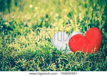 Love Concept For Valentine's Day. Heart-shape For Love Symbols On Green Grass