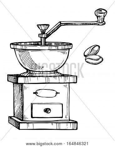 Coffee grinder freehand pencil drawing on white background vector illustration. Retro manual coffee grinder or mill with coffee beans sketch. Cafe or restaurant menu design. Isolated coffee grinder in vintage style.