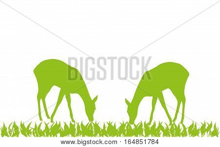 Two animals, deer, animal and nature illustration