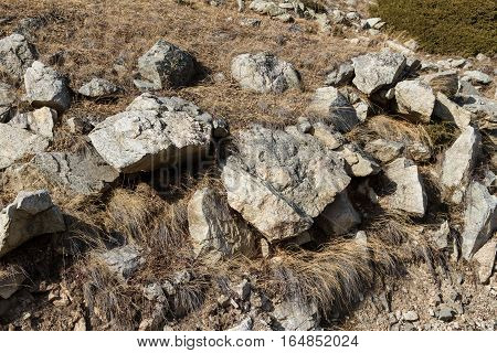 Stones On Slope