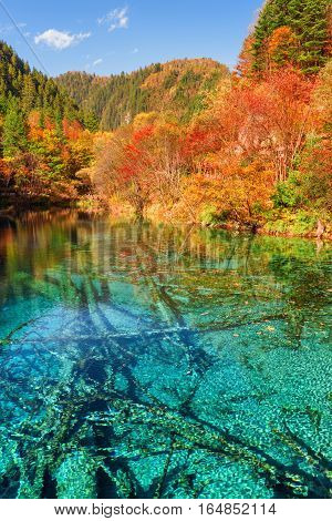Fantastic View Of The Five Flower Lake (multicolored Lake)