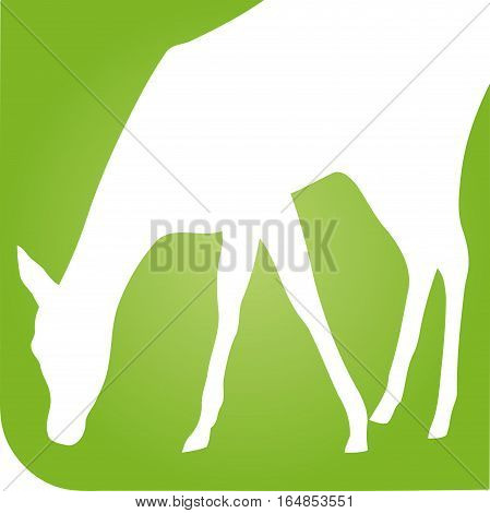 Animal in rectangle, deer, animal and nature illustration