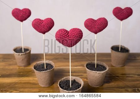 Five crocheted hearts in peat glasses on a wooden table.