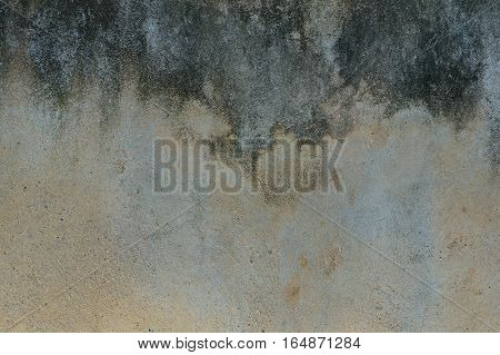 The Paint Is Peeling Off Wall, Background