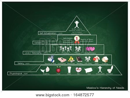 Social and Psychological Concepts Illustration of Maslow Pyramid with Five Levels Hierarchy of Needs in Human Motivation on Green Chalkboard.
