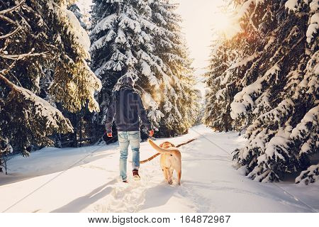 Trip to winter nature. Young man in warm clothes is walking with his labrador in snowy forest.