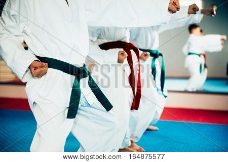 Children in Tae Kwon Do stance on class
