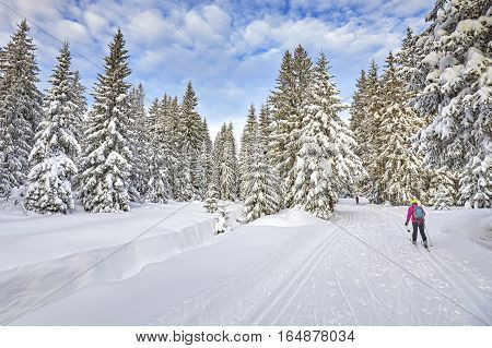 Winter Landscape With Cross-country Skiing Tracks And Skier.